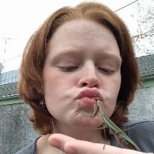 An image of GingerBredGirl