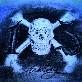 An image of Bones103