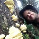 An image of Mushroompicker